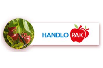 handlopak_logo